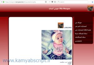 اسکریپت اتصال به API اینستاگرام - فارسی