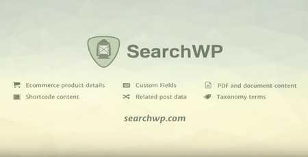 searchwp - افزونه جستجوگر پیشرفته وردپرس SearchWP + افزودنی ها