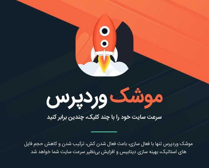 افزونه WP ROCKET راکت وردپرس فارسی نسخه ۳٫۵٫۰٫۲